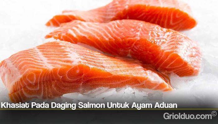 Khasiat Pada Daging Salmon Untuk Ayam Aduan